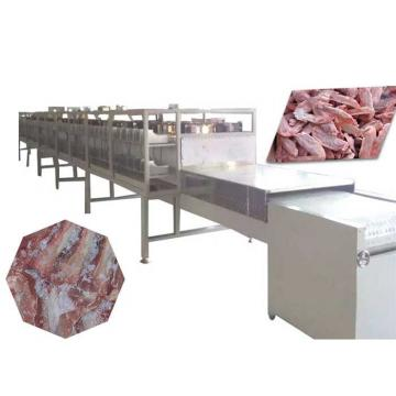 Drum Vegetable Fruit Dates Washer Cleaner Frozen Meat Fish Defrost Thawing Machine