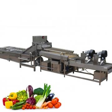 Root block vegetables washing machine /food cleaning machine