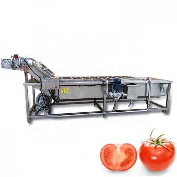 Good Structural Strength Fruit And Vegetable Cleaner Lettuce Washing Machine Safe Operation