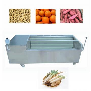 Easy Operation Stainless Steel Fresh Fruit Washer Machine/fresh Vegetables Washing Machine/food Washer