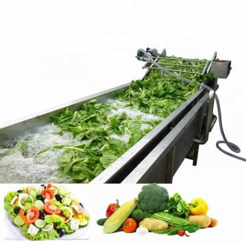 Automatic Multifunctional Stainless Steel 304 Bubble Fruit Vegetable Food Washing Machine