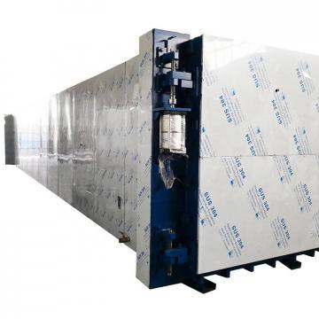 Industrial Belt Type Microwave Food Drying Sterilization Equipment